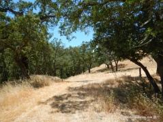 maguire peaks trail