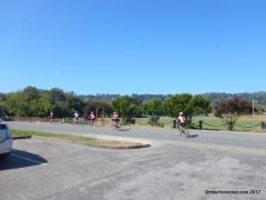 hauke park