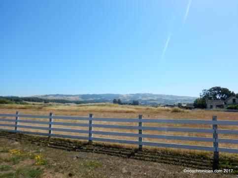 petaluma hill rd