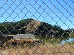 stafford lake/dam