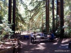old church picnic area