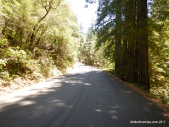 adobe canyon rd