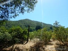 sonoma mountain rd