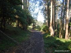 curran trail