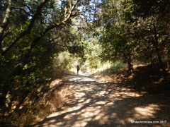 meadows canyon trail
