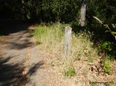 old san pablo trail