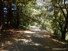 lake anza trail