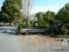 martinez shoreline park