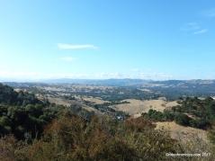 pine ridge views