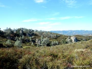 pine ridge