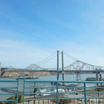 zampa bridge