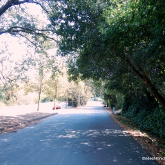 bike route thru orinda