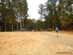 to columbine trail