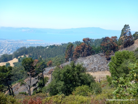 grizzly peak views