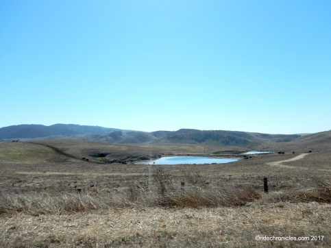 pt reyes national seashore