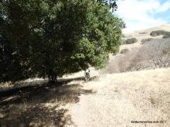 buckeye trail