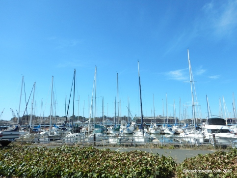 vallejo yacht harbor
