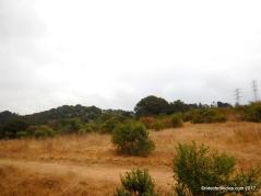 grass valley tr
