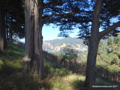 to panoramic way