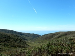 pt reyes natl seashore