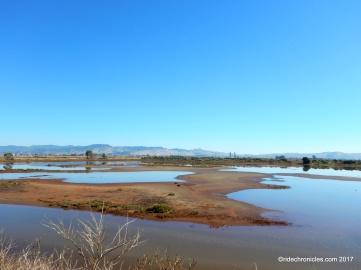 huichica creek area