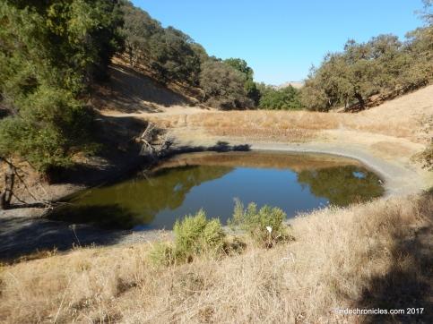 twin ponds tr
