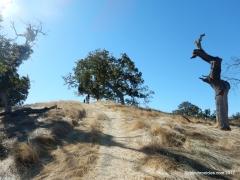 haystack hill