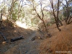 buckeye ravine tr