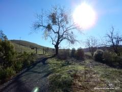 EBMUD trail