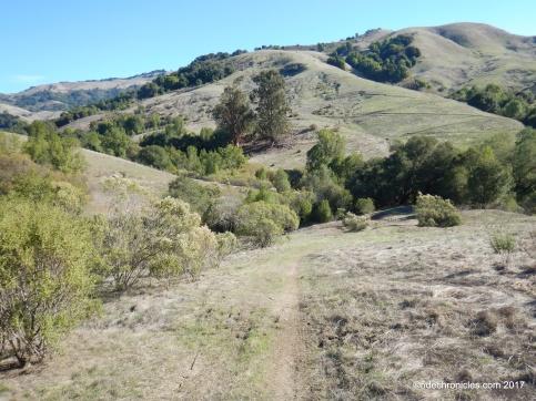 rocky ridge tr