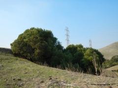 calaveras ridge tr