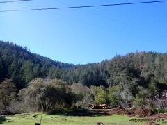dry creek rd