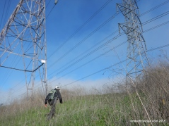 to transmission towers