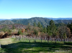 mt veeder views