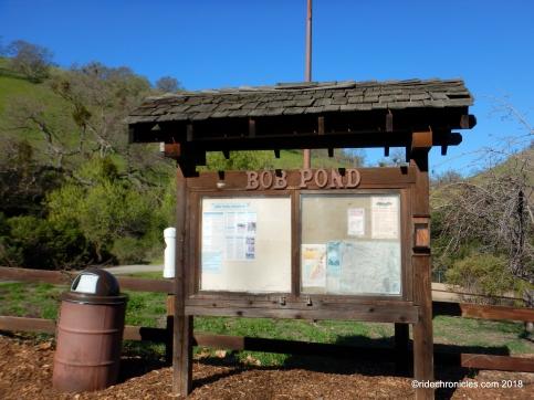 bob pond
