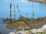 remillard park-core madera channel
