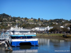 larkspur ferry