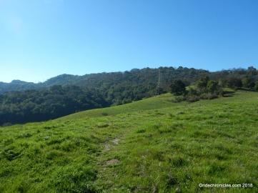 whipsnake tr views