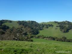 oak knoll bench views
