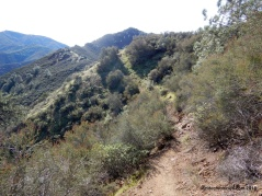 mitchell rock trail