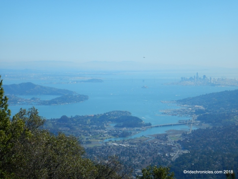 mt tam views
