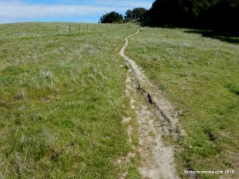 to briones peak