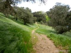 HCAP trail