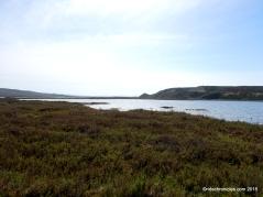 ocean beach park marshland