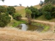 twin pond