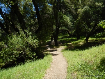 blue oak shortcut