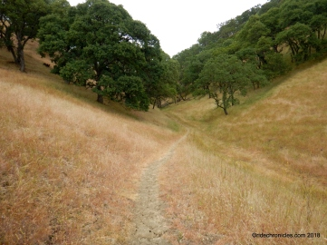 buckeye ravine