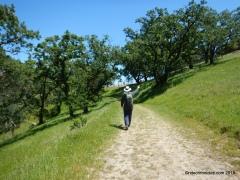 blue oak tr