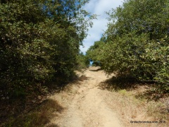 CA Riding & Hiking Trail