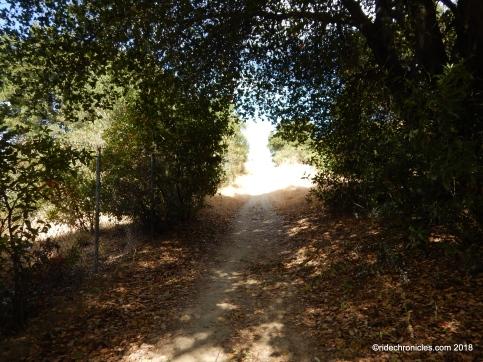 mokelumne trail